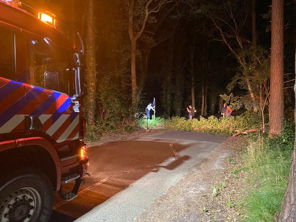 Boom ongevallen op de Horloseweg in Ermelo