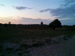 Zaterdag 22 juni Midzomernachtbeleving vanaf schaapskooi Ermelo