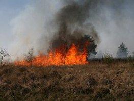Natuurbrand voorkomen