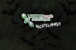 Nachtklimmen in Klimbos Ermelo!