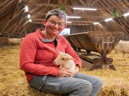 Eerste lammetje geboren bij Ermelose kudde