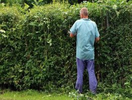 Let op overhangend groen uit je tuin